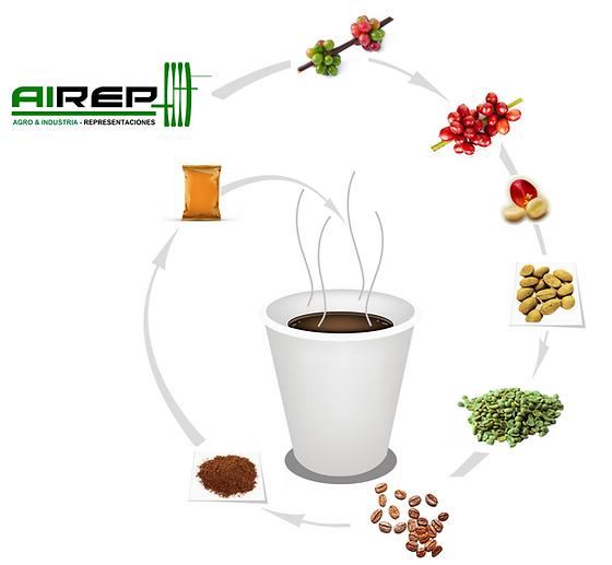 Equipos para el procesamiento de cafe