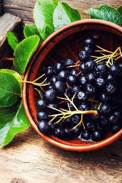 chokeberry-with-leaf_75924-6566.jpg