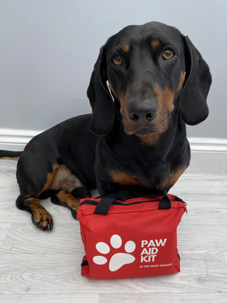 PAW AID KIT BY THE DOGGY DELIGHTS LAUNCHES