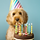 Thumbnail: Birthday Treat Box