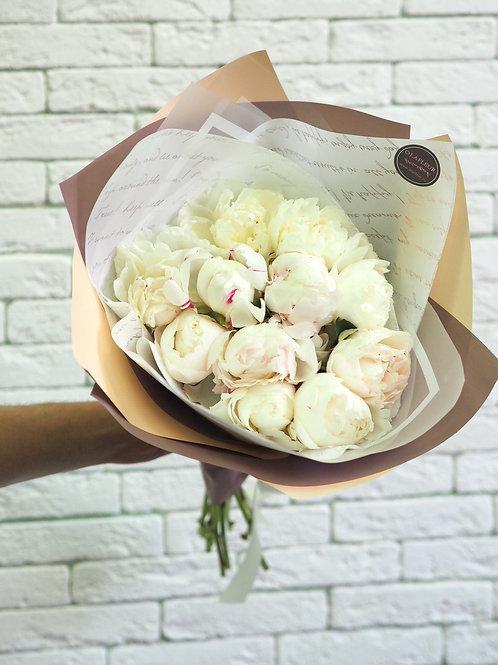 Голландские пионы бело-розовые