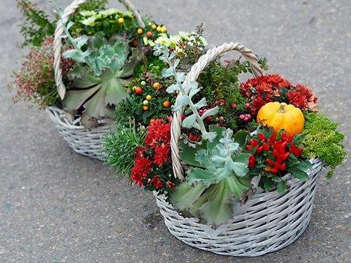 Горшечные цветы в большой корзине