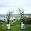 Thumbnail: Арка из веток и цветов для Марии и Станислава