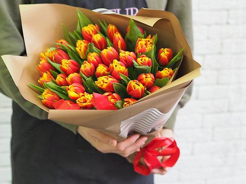 35 тюльпанов к празднику