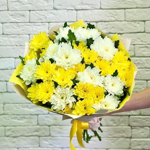 Хризантемы, 15 штук