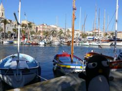 Flickr - Pingouino sur le port