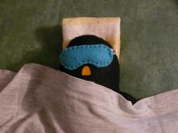 Flickr - *Pingouino...jpg