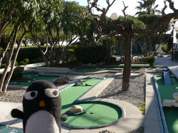 Flickr - Pingouino au golf miniature