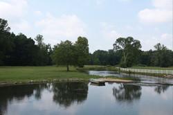 Creek & Meadow - Copy