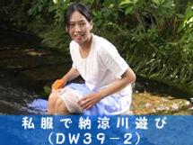 dw39-2.jpg