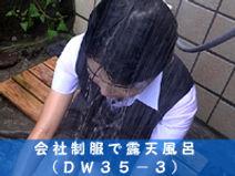 dw35-3.jpg