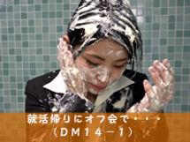 dm14-1.jpg