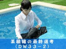 dw33-2.jpg