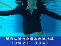 DW21-3UW.jpg