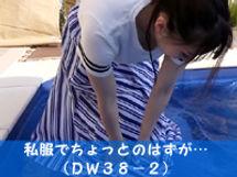 dw38-2.jpg