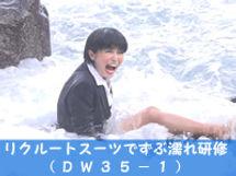 dw35-1.jpg