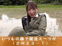 dm23-1.jpg