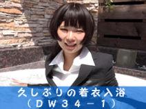 dw34-1.jpg