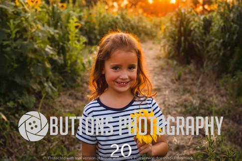 Banisters Sunflower watermarked-20.jpg