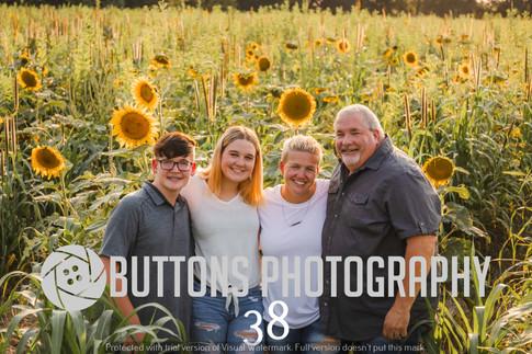 Jenni Mantovani Sunflower Watermarked-38.jpg