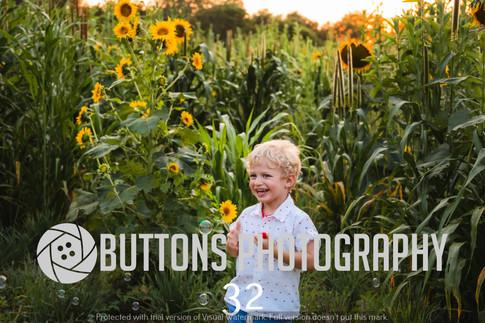 Banisters Sunflower watermarked-32.jpg