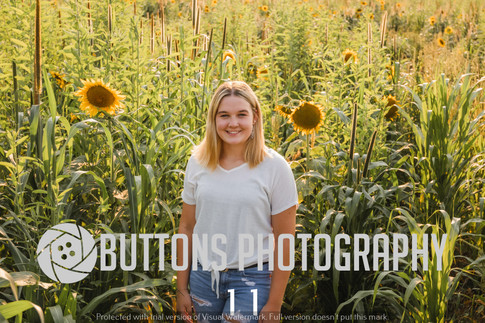 Jenni Mantovani Sunflower Watermarked-11.jpg