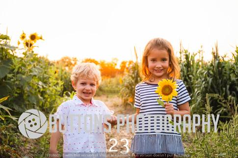 Banisters Sunflower watermarked-23.jpg