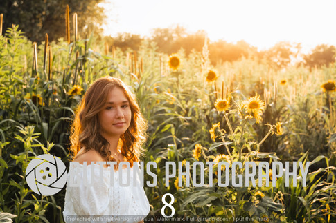 Riley Pfeifer Sunflower watermarked-8.jpg