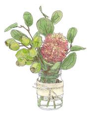 Banksia & Gumnuts