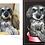 Thumbnail: Portrait: Lin