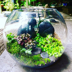 Miniature Japanese garden in fish bowl $69
