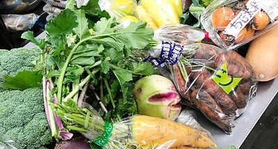 横浜野菜、神奈川、農家、野菜、減農薬、無農薬、西洋野菜、ガリエニ