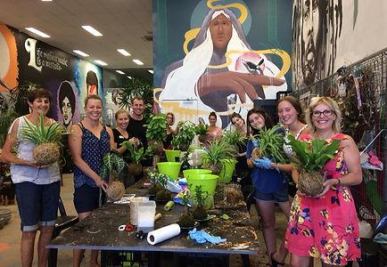 Mappin's Nursery in Westend, Brisbane