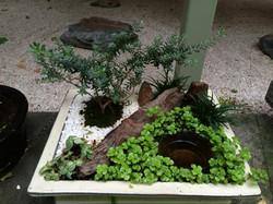 miniature Japanese garden $75