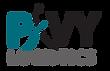 PVY - Logo 26082020.png
