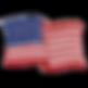 amer flag.png