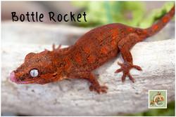 Bottle-Rocket-032821-6311