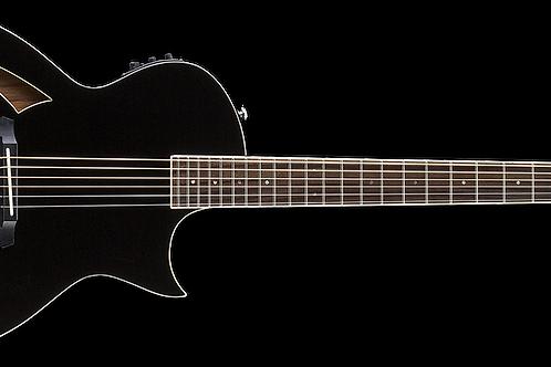 ARC6BLK 6 string