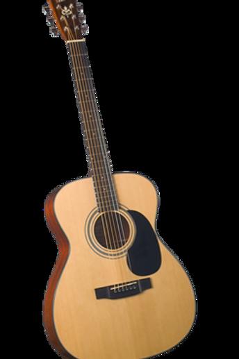 Bristol BM16 Dreadnaught Acoustic