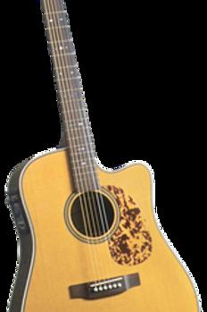Blueridge BR-160CE Solid Rosewood
