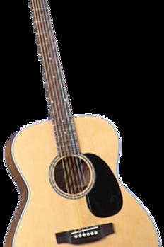 Blueridge BR-63 Santos Rosewood
