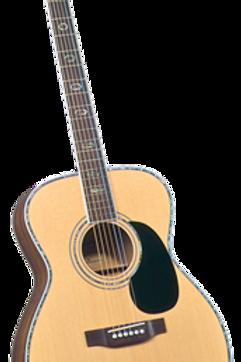Blueridge BR-73 Santos Rosewood