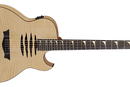 Dean 2017 Dave Mustaine Mako A/E Flame Top