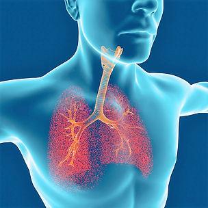 Zuurstofhterapie EWOT ondersteunt bij kortademigheid als gevolg van toename van de ademarbeid; de moeite die het kost om een bepaalde hoeveelheid lucht in en uit te ademen.