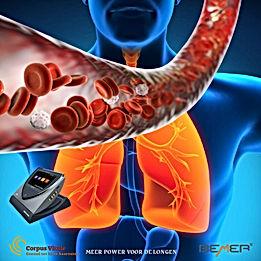 De fysische vasculaire therapie BEMER® Verbetering van de microcirculatie  Microcirculatie speelt een belangrijke rol voor de gezondheid en het welzijn van mensen. Een slechte microcirculatie kan pijn en zelfs chronische ziektes teweegbrengen.  De fysische vasculaire therapie BEMER stimuleert door een specifiek elektromagnetisch signaal de beperkte vasomotie (eigen beweging van bloedvaten) en verbetert daardoor wetenschappelijk aantoonbaar de microcirculatie. De BEMER sets omvatten alles wat nodig is voor de behandeling en worden wereldwijd met succes gebruikt.