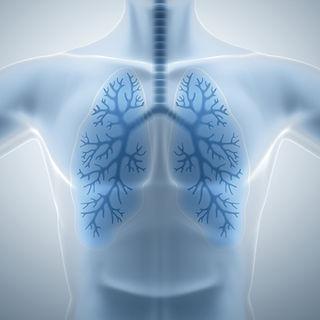 Er is een aanzienlijke verbetering wanKoppel fysiotherapie aan trainen met zuurstoftherapie EWOT om de hersteltijd bij blessures terug te brengen en prestaties te verbeteren.