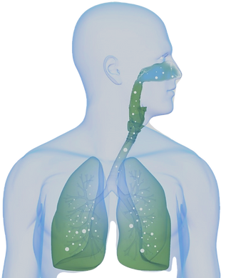 Overspoel uw cellen met zuurstof voor meer gezondheid en vitaliteit.
