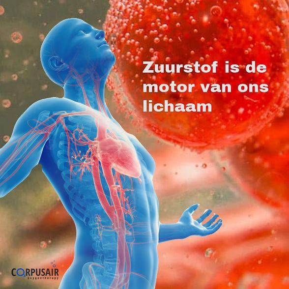 ademhalingsproblemen, oververmoeidheid of spierverlies? Zuurstoftherapie EWOT geeft energie voor het herstel