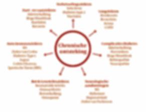 Chronische ontstekingsziekten hebben een directe relatie met een beperkte circulatie in de kleinste bloedvaatjes.Er wordt regelmatig gewaarschuwd voor doorbloedingsproblemen in de grotere vaten: de dreiging van een hartinfarct en een beroerte. Wij zijn echter duidelijk slecht geïnformeerd over de gevolgen van een verstoorde doorbloeding in de kleinste vaten en we komen niet eens op de gedachte dat onze klachten daarmee te maken hebben.