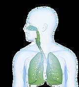 EWOT zuurstoftherapie verbetert longfunctie